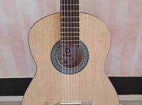 گیتار اکتاو در شیپور-عکس کوچک