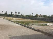 فروش زمین 215 متر شهرکی در سرخرود در شیپور-عکس کوچک