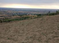 زمین کشاورزی بالای آببندان کفشگیری گرگان در شیپور-عکس کوچک