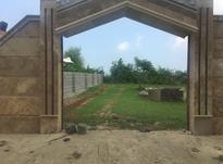 250متر زمین با پروانه ساخت در شیپور-عکس کوچک