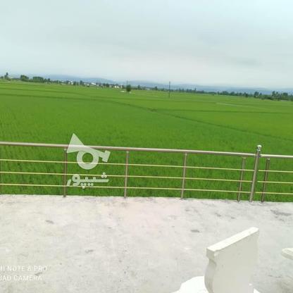 فروش ویلا 300 متر در محمودآباد در گروه خرید و فروش املاک در مازندران در شیپور-عکس3