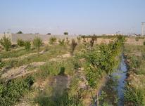 زمین باغی سند دار در شیپور-عکس کوچک