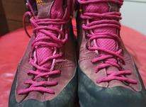 کفش homottoسایز 39 در شیپور-عکس کوچک