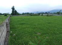 فروش زمین 1500 متر در اسالم در شیپور-عکس کوچک
