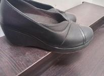 کفش نو یکبار فقط پوشیدم در شیپور-عکس کوچک