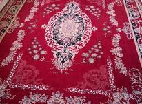 فرش12متری زرشکی در شیپور-عکس کوچک