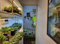 فروش آپارتمان 102 متر در امام رضا در شیپور-عکس کوچک