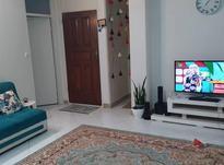 آپارتمان 53 متر در فلاح در شیپور-عکس کوچک