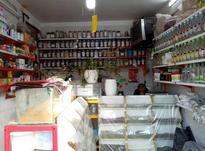 فروش عطاری در شیپور-عکس کوچک