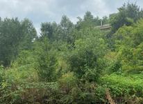 زمین مسکونی کوره بر در شیپور-عکس کوچک