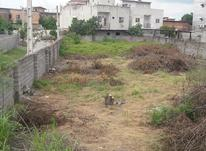 فروش زمین مسکونی 310 متر در سائیج محله در شیپور-عکس کوچک