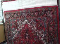 فرش دست باف دوعدد شش متری نو در شیپور-عکس کوچک