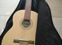 گیتار سلاریوس در شیپور-عکس کوچک