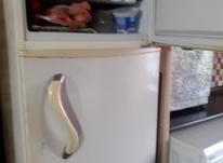 فروش فوری یخچال فریزر در شیپور-عکس کوچک