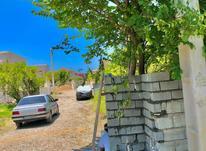 فروش فوری زمین بافت مسکونی زیر قیمت منطقه  در شیپور-عکس کوچک