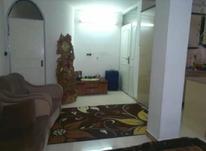 اجاره آپارتمان 55 متر در لاهیجان در شیپور-عکس کوچک