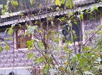 فروش ویلا 4000 متر در رضوانشهر در شیپور-عکس کوچک