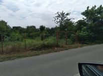 زمین مسکونی 245 متر در تنکابن در شیپور-عکس کوچک