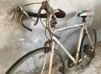 دوچرخه کورس در شیپور-عکس کوچک