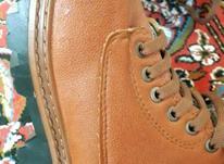 فروش کفش عالی با برندCAT در شیپور-عکس کوچک