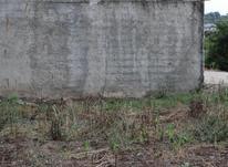 زمین مسکونی 220 متر در سورک در شیپور-عکس کوچک