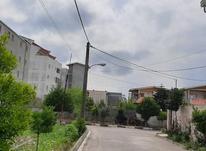 فروش زمین مسکونی ناب در شیپور-عکس کوچک