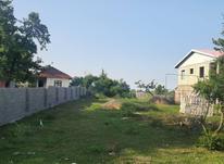 فروش زمین مسکونی 900 متر در رضوانشهر در شیپور-عکس کوچک