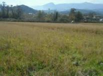 فروش زمین جبالبارز شمالی در شیپور-عکس کوچک
