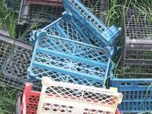 خریدار سبد میوه بالاترین قیمت در شیپور
