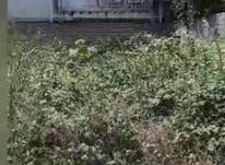فروش زمین مسکونی 233متری شفا در شیپور-عکس کوچک