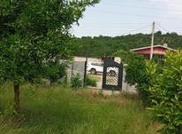 فروش زمین کشاورزی 350 متر در واسکس در شیپور-عکس کوچک