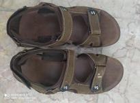 کفش پسرانه با تخفیف در شیپور-عکس کوچک