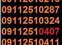 0911.251.32.43 در شیپور-عکس کوچک