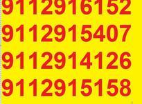 0911.291.39.37 در شیپور-عکس کوچک
