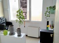 آپارتمان 50 متر در جیحون در شیپور-عکس کوچک