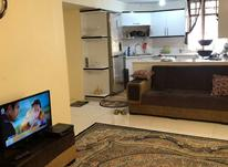 58 متر 2 خواب/ سلسبیل هاشمی/ طبقه اول در شیپور-عکس کوچک