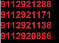 0911.292.11.88 در شیپور-عکس کوچک