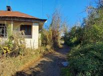 فروش خانه ویلایی 1400 متر در اطراف کویه در شیپور-عکس کوچک