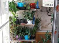 اجاره آپارتمان 90 متر در سلسبیل در شیپور-عکس کوچک