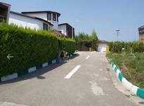 فروش زمین مسکونی 255 متر در رویان در شیپور-عکس کوچک