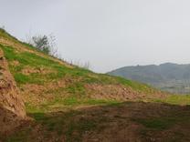 فروش زمین مسکونی 700 متر در سوستان در شیپور