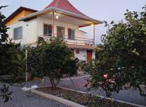 فروش زمین مسکونی 5000 متر در سرخرود در شیپور-عکس کوچک