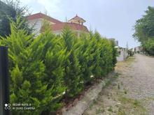 فروش زمین 300 متر در سرخرود در شیپور