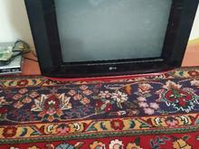 تلویزیون ال جی در شیپور