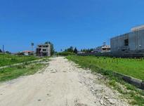 فروش زمین مسکونی شهرکی  480 متر در رویان در شیپور-عکس کوچک