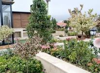طراحی،اجراونظارت فضای سبز در شیپور-عکس کوچک