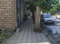فروش زمین اداری و تجاری 278 متر در صومعه سرا در شیپور-عکس کوچک