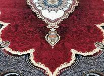 فرش دربار کاشان، روناسی 12متری (لاکی ، قرمز)، طرح 700 شانه در شیپور-عکس کوچک