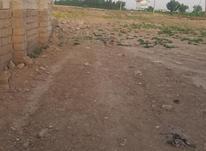 زمین مسکونی تفکیک شده شهرداری در شیپور-عکس کوچک