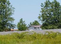 فروش زمین مسکونی 285 متری در بهترین کوچه ساحلی چمخاله در شیپور-عکس کوچک